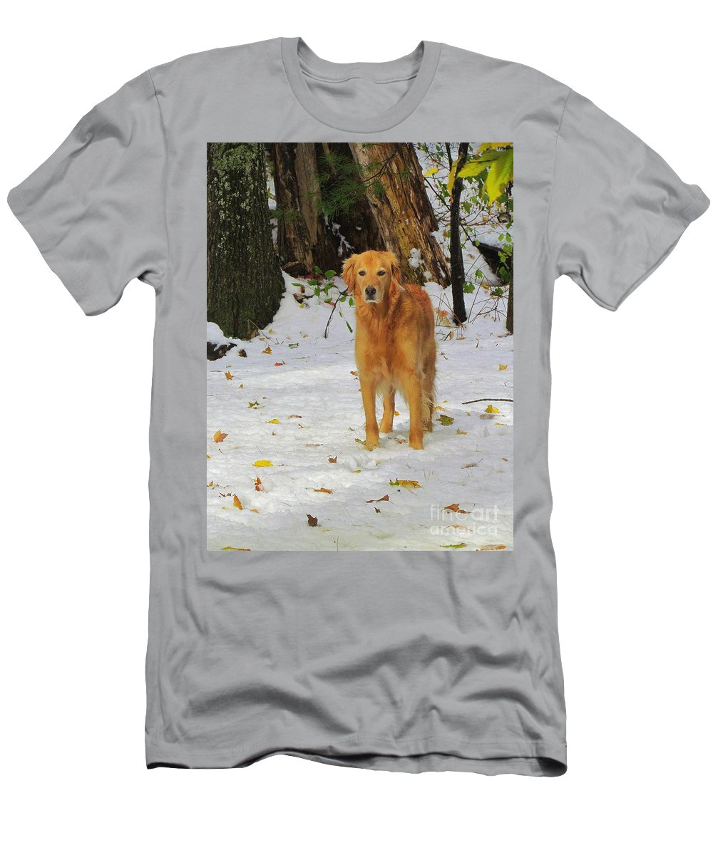 Golden Retriever Men's T-Shirt (Athletic Fit) featuring the photograph Too Early For Snow Mama by Elizabeth Dow