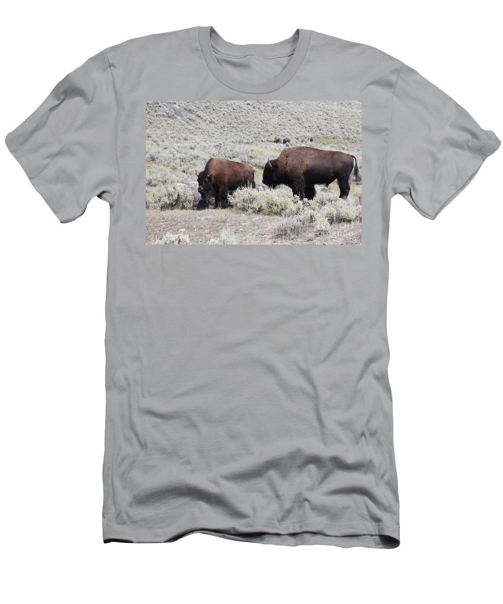Bison Men's T-Shirt (Athletic Fit) featuring the photograph Two Bison by Robin Maria Pedrero