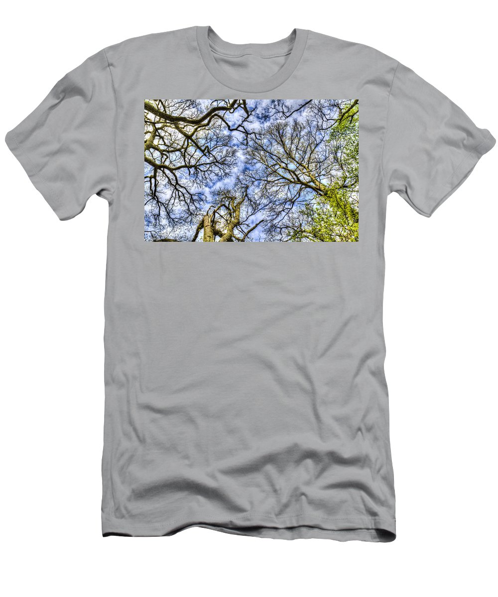 Forest Men's T-Shirt (Athletic Fit) featuring the photograph Up Into The Trees by David Pyatt