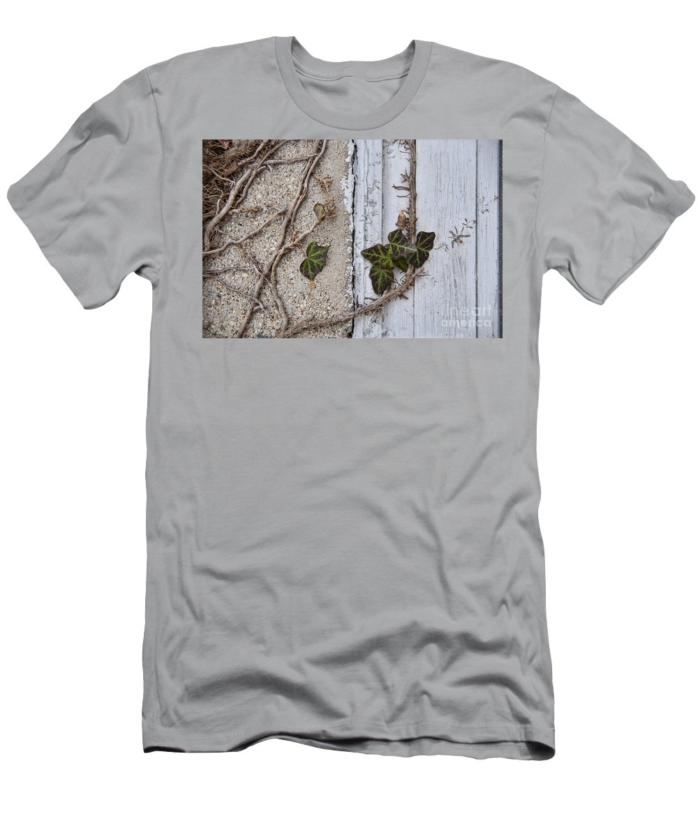 Vine Men's T-Shirt (Athletic Fit) featuring the photograph Vine On Wall by David Arment