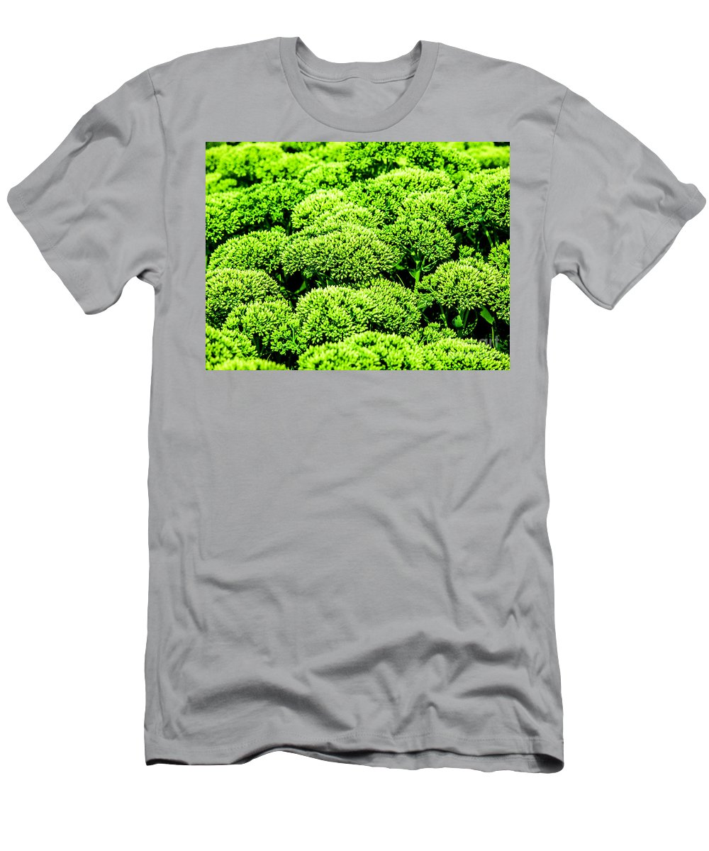 Flora Men's T-Shirt (Athletic Fit) featuring the photograph Wascana-45 by David Fabian