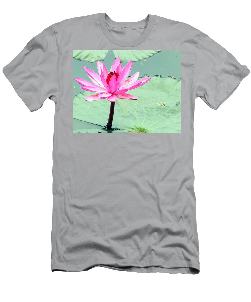 Outdoor Men's T-Shirt (Athletic Fit) featuring the photograph Water Lily by Paul Fell