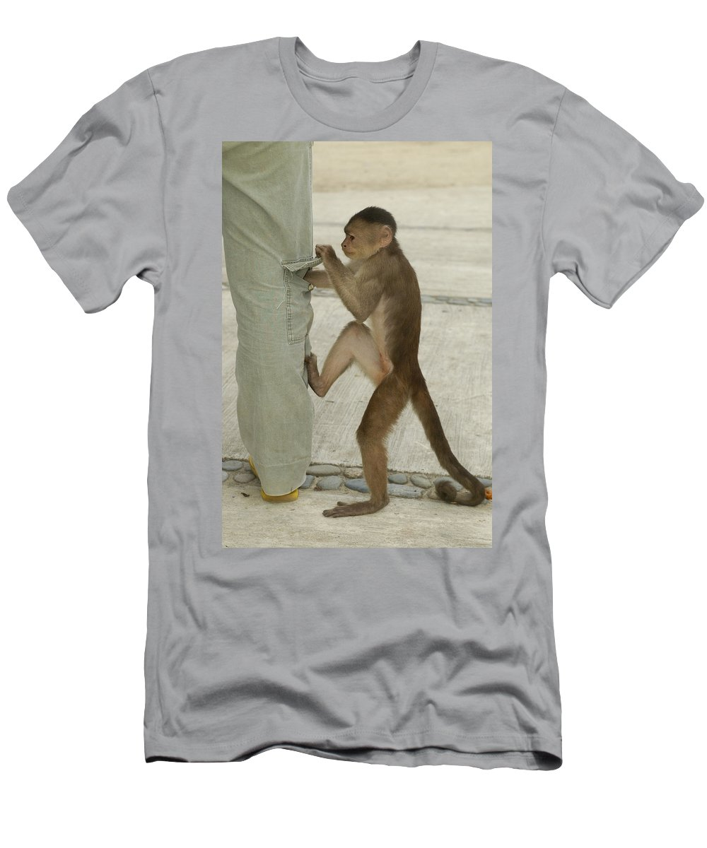 Feb0514 Men's T-Shirt (Athletic Fit) featuring the photograph White-fronted Capuchin Checking Pocket by Pete Oxford