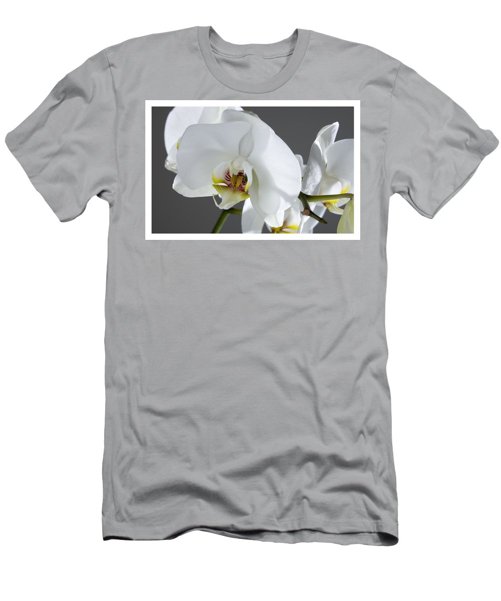 White Orchids On A Grey Background Men's T-Shirt (Athletic Fit) featuring the photograph White Orchid 1b by Mauro Celotti