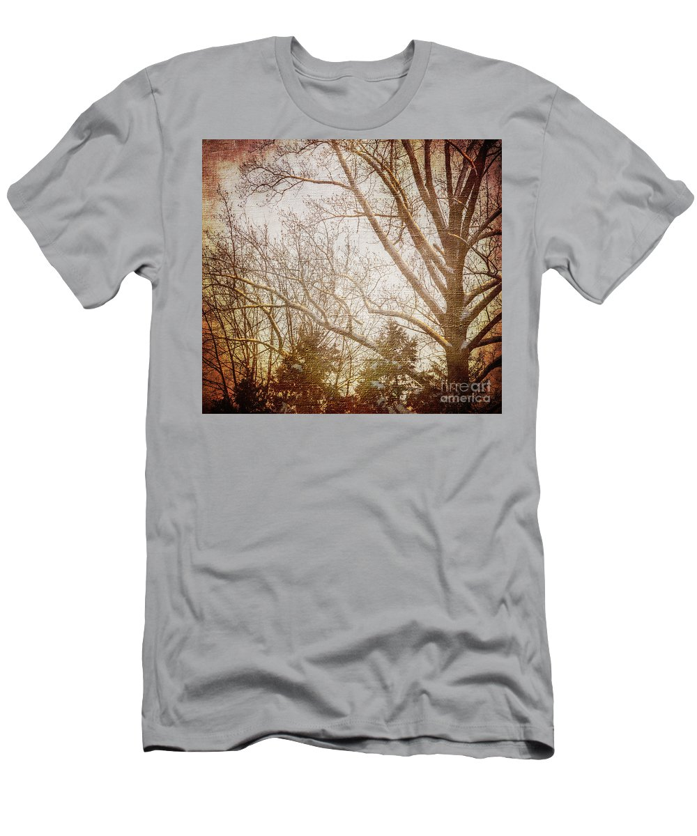 Trees Men's T-Shirt (Athletic Fit) featuring the photograph Winter Trees by Judy Wolinsky