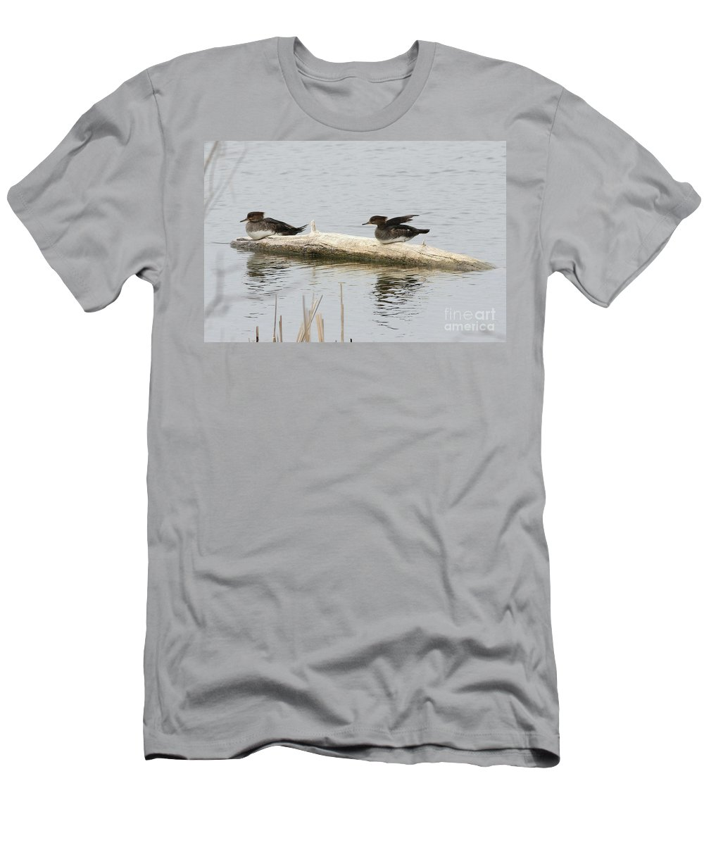 Wood Duck Men's T-Shirt (Athletic Fit) featuring the photograph Wood Duck Females On A Log by Lori Tordsen