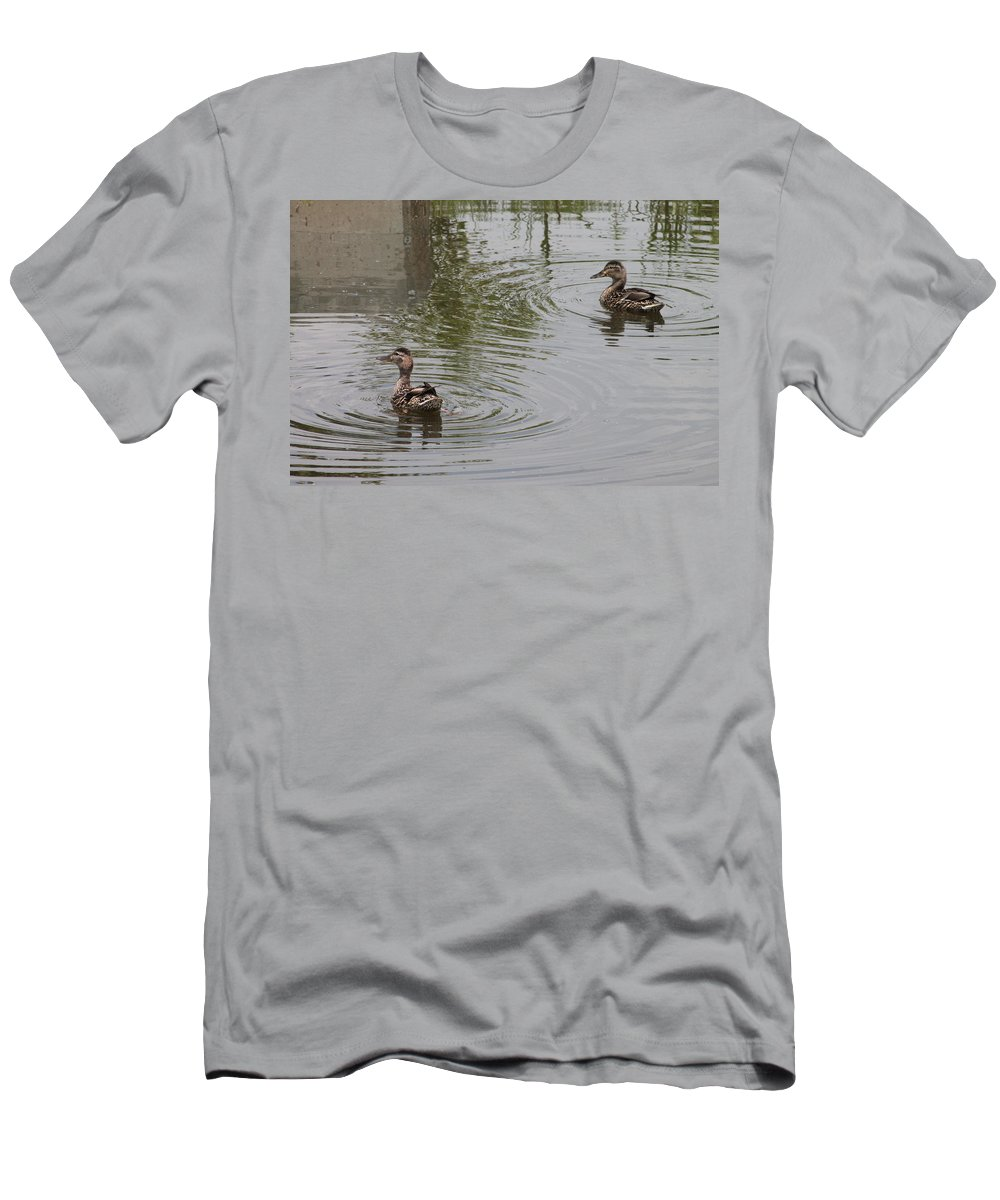 Birds Men's T-Shirt (Athletic Fit) featuring the photograph Young Ducks by Wayne Williams