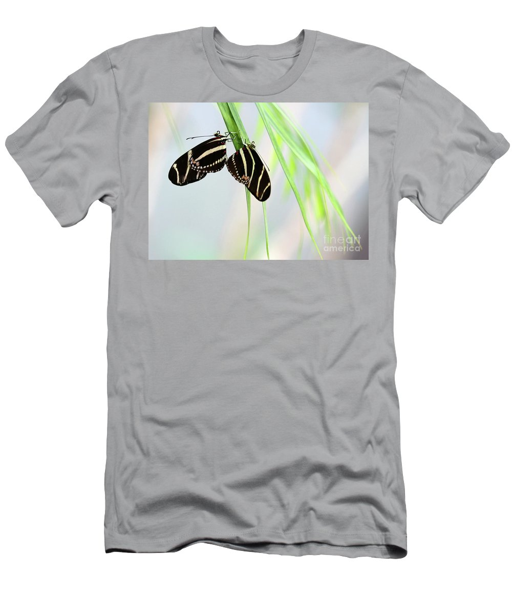 Zebra Men's T-Shirt (Athletic Fit) featuring the photograph Zebra Longwing Butterflies Mating by Sabrina L Ryan