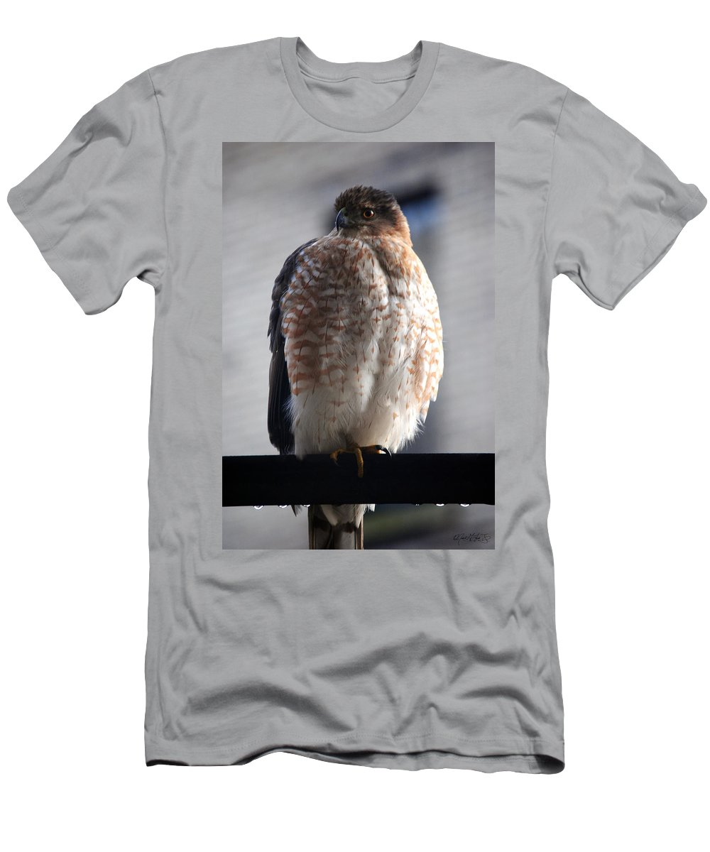 Men's T-Shirt (Athletic Fit) featuring the photograph 06 Falcon by Michael Frank Jr