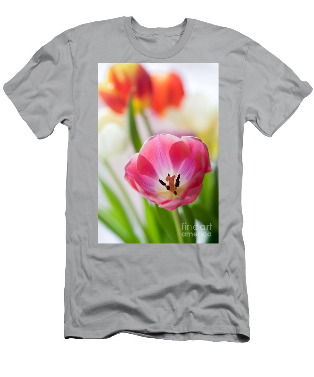 Tulip Men's T-Shirt (Athletic Fit) featuring the photograph Colourful Tulips by Kati Finell