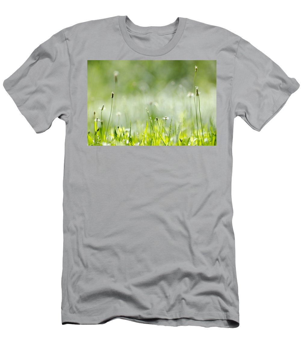 Grass Men's T-Shirt (Athletic Fit) featuring the photograph Green Grass by Mats Silvan