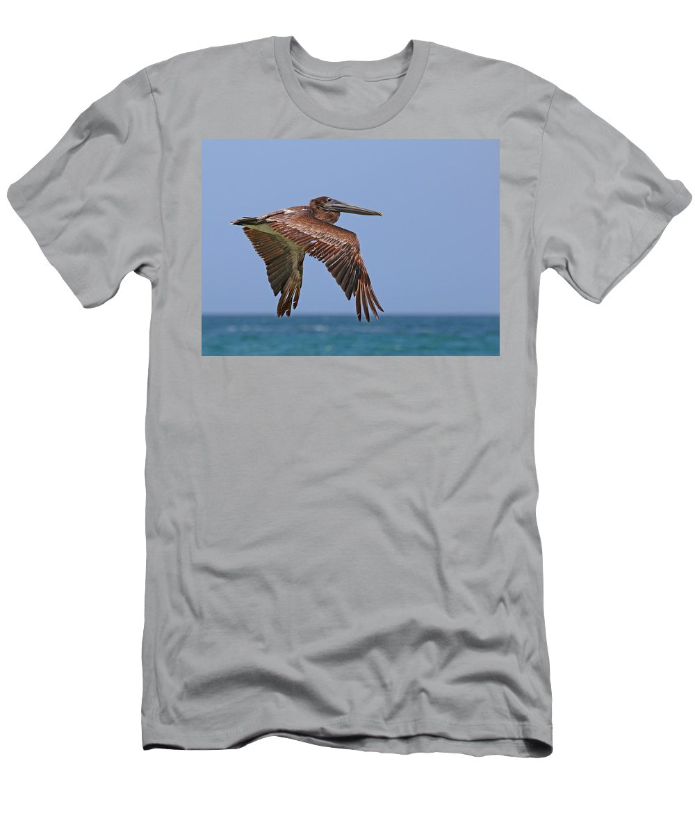 Adult Men's T-Shirt (Athletic Fit) featuring the photograph Pelican by Paul Fell
