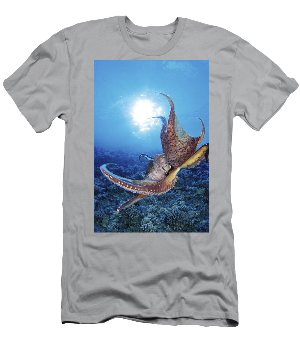 30-csm0241 Men's T-Shirt (Athletic Fit) featuring the photograph Hawaii, Day Octopus by Dave Fleetham - Printscapes