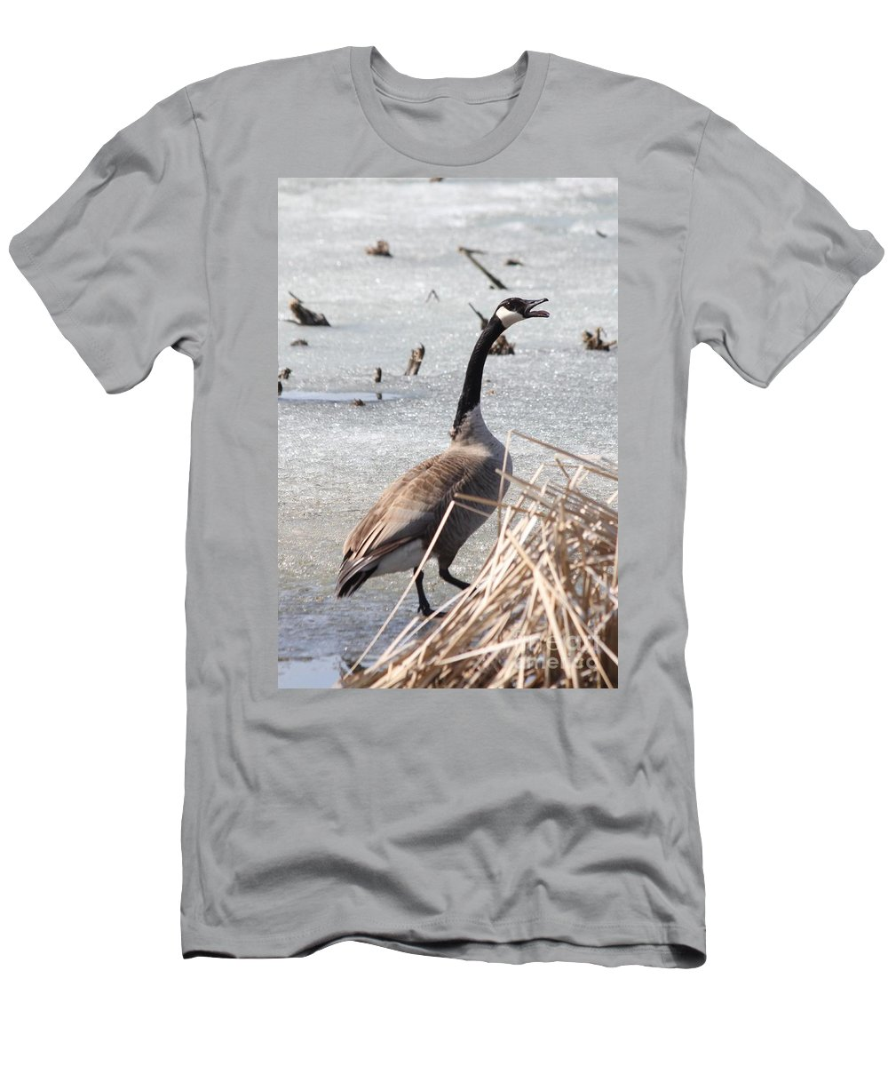 Goose Men's T-Shirt (Athletic Fit) featuring the photograph Call Of The Wild by Lori Tordsen