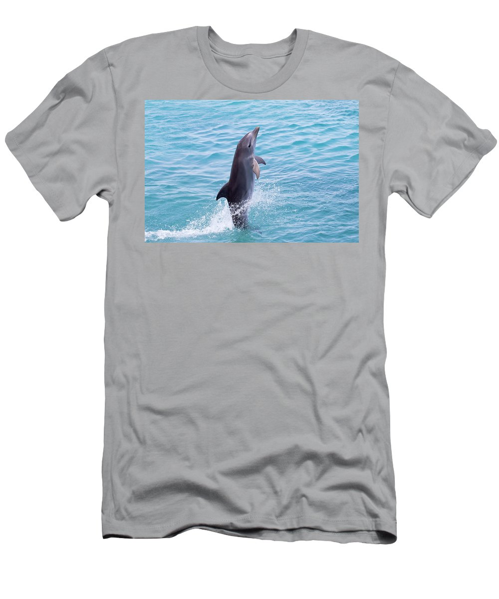 Adult Men's T-Shirt (Athletic Fit) featuring the photograph Atlantic Bottlenose Dolphin by Dave Fleetham