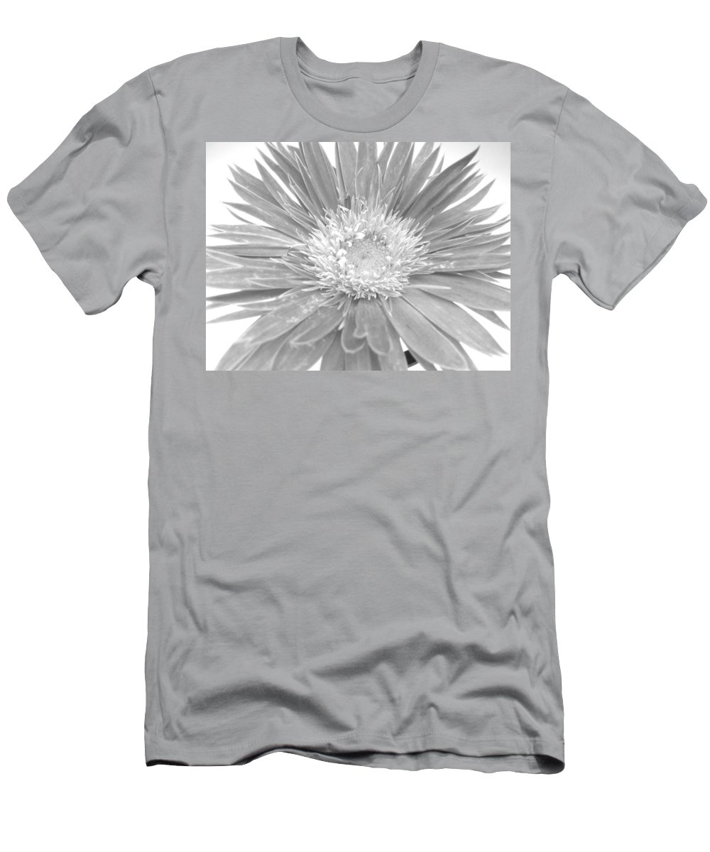 Gerbera Photographs Men's T-Shirt (Athletic Fit) featuring the photograph 5440c4 by Kimberlie Gerner