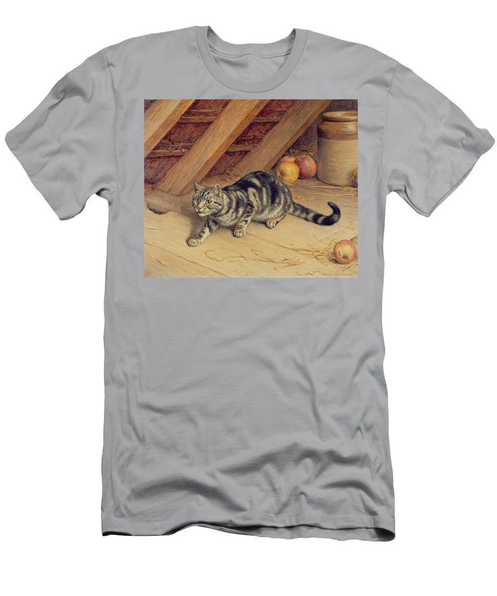 Cat; Apples; Loft Men's T-Shirt (Athletic Fit) featuring the painting Alert by Frank Paton