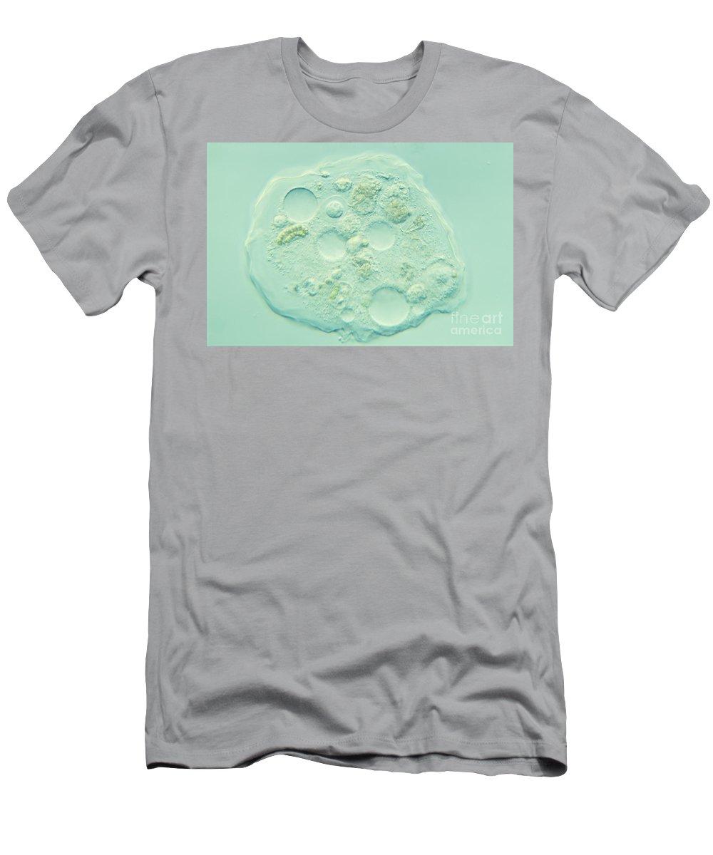 Nomarski Microscopy Men's T-Shirt (Athletic Fit) featuring the photograph Amoeba Verrucosa by M. I. Walker