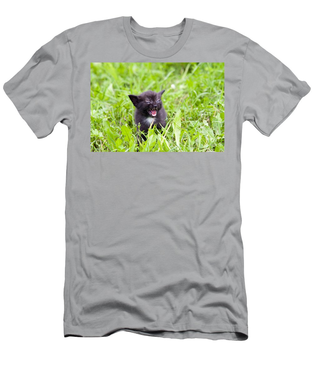 Adorable Men's T-Shirt (Athletic Fit) featuring the photograph Angry Kitten by Michal Boubin