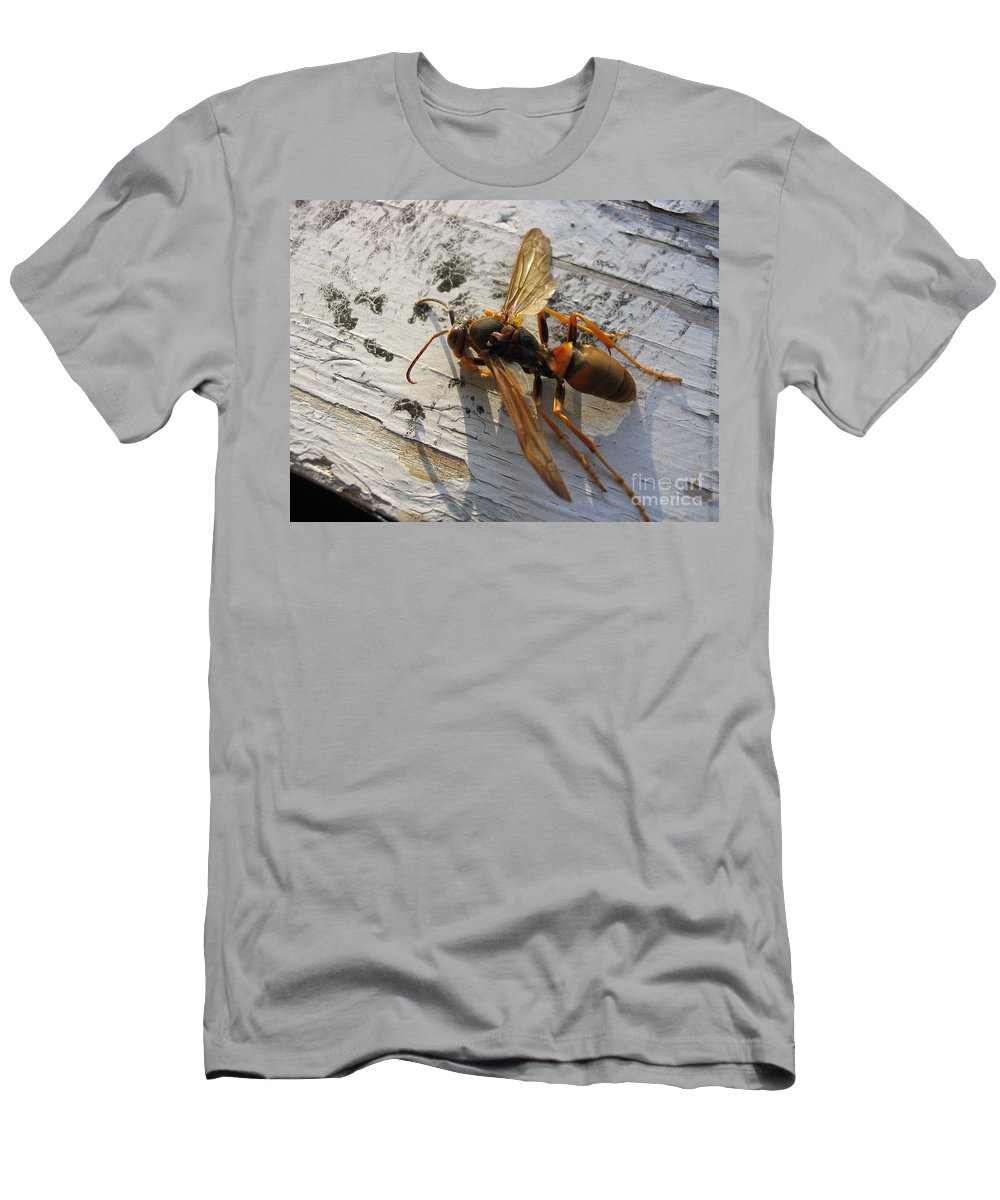 Wasp T-Shirt featuring the photograph Apache Red Wasp by Mark Robbins