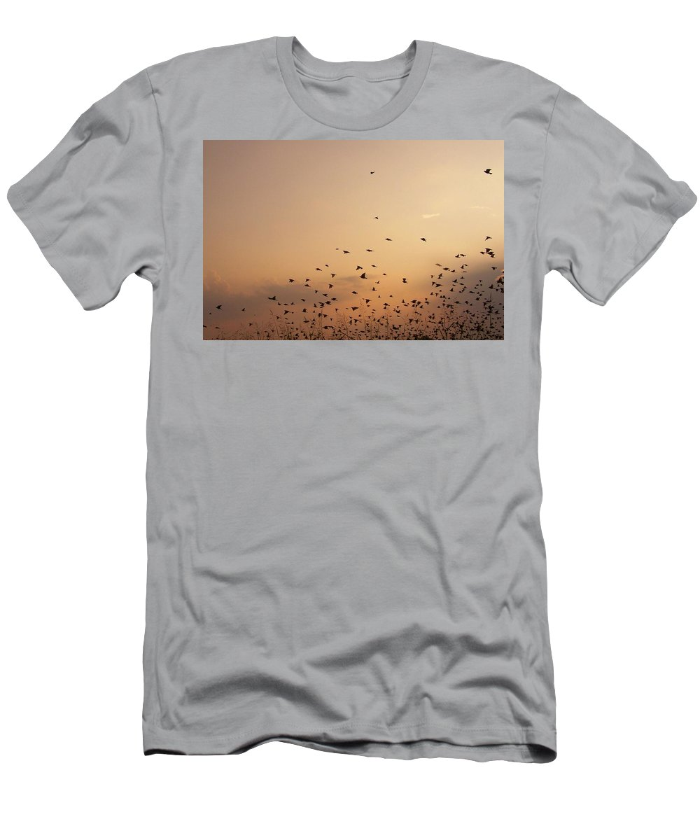 Digital Photographs Of Birds Men's T-Shirt (Athletic Fit) featuring the photograph Birds by Christy Leigh