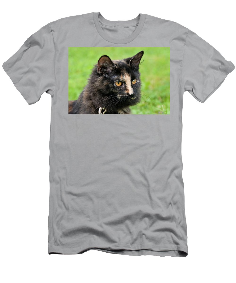 Cat Men's T-Shirt (Athletic Fit) featuring the photograph Bug 2956 by Guy Whiteley