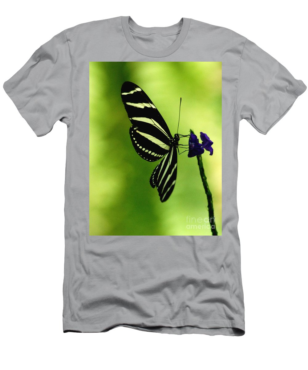 Butterfly Men's T-Shirt (Athletic Fit) featuring the photograph Butterfly by Ronald Grogan
