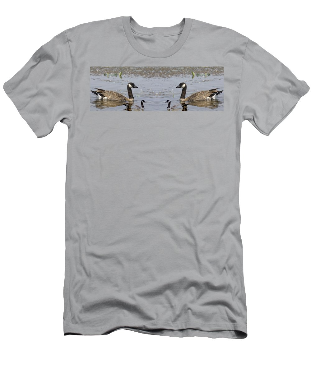 Canadian Goose Symmetry Men's T-Shirt (Athletic Fit) featuring the photograph Canadian Goose Symmetry by Douglas Barnard