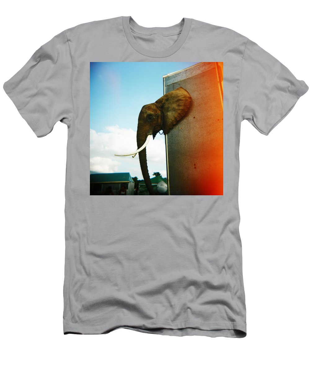 Elephant Men's T-Shirt (Athletic Fit) featuring the photograph Elephant Box by Olivier De Rycke
