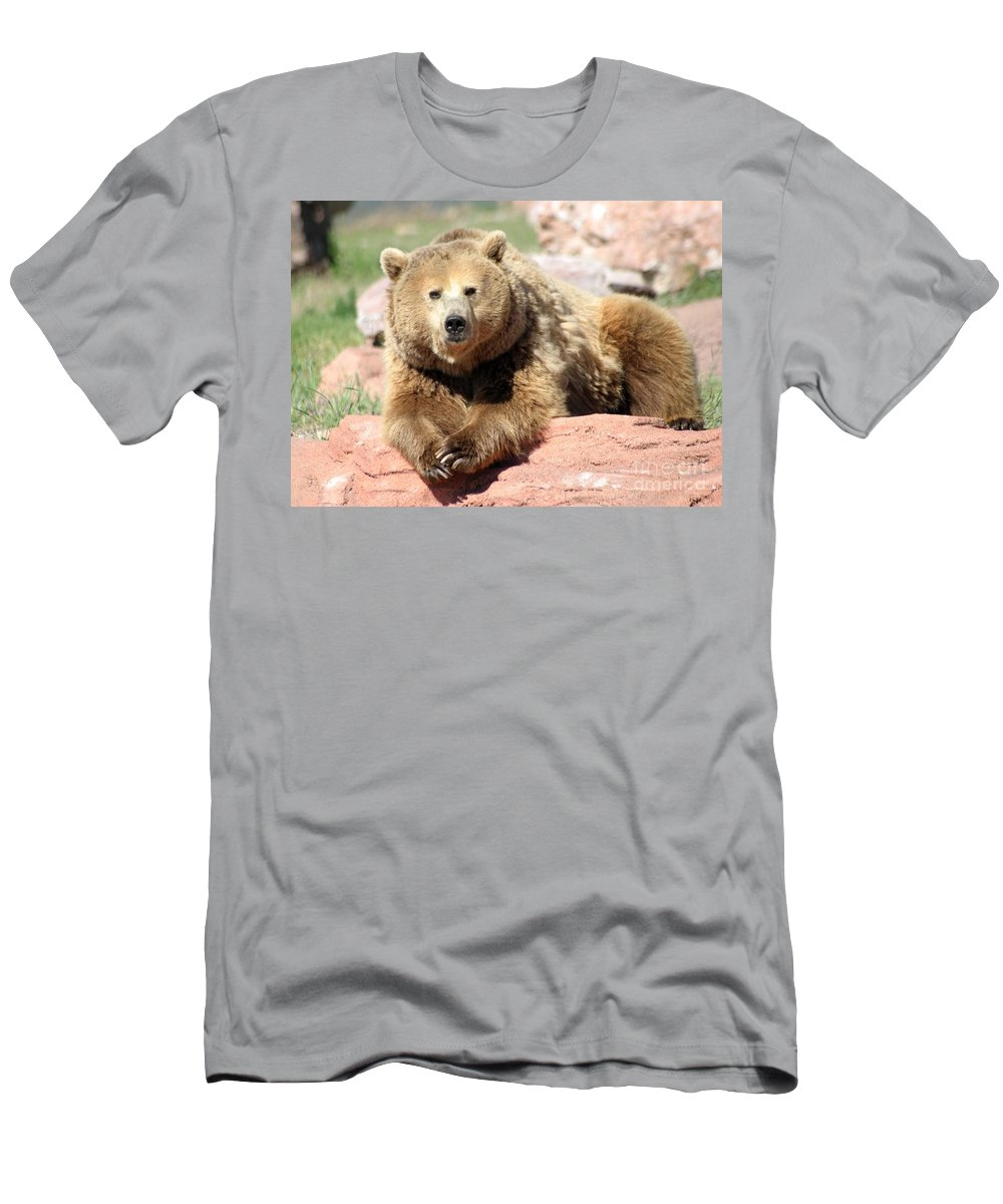 Bear Men's T-Shirt (Athletic Fit) featuring the photograph Eye To Eye by Living Color Photography Lorraine Lynch