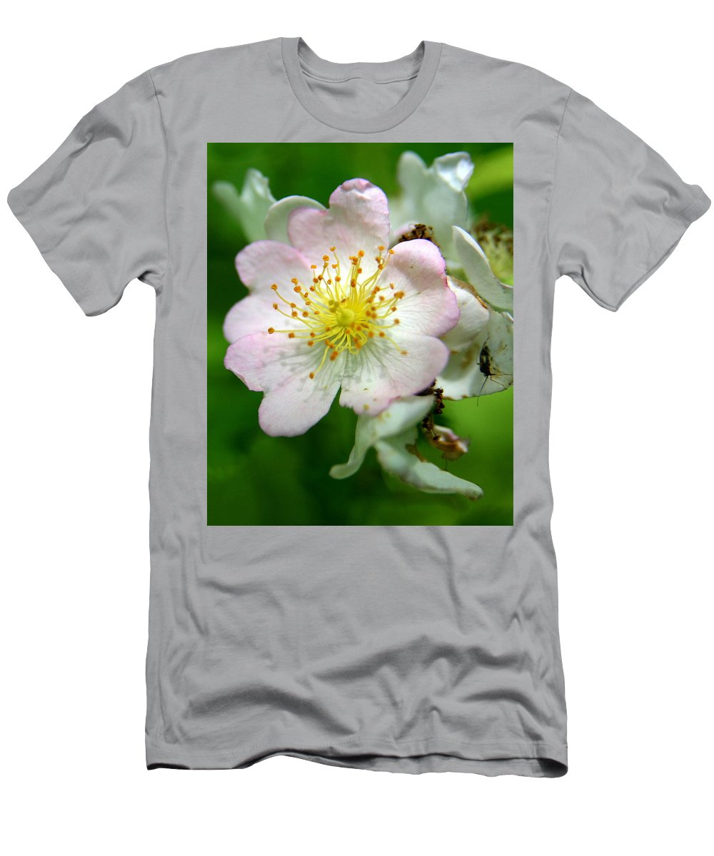Flower Men's T-Shirt (Athletic Fit) featuring the photograph Floral Fireworks by Neal Eslinger