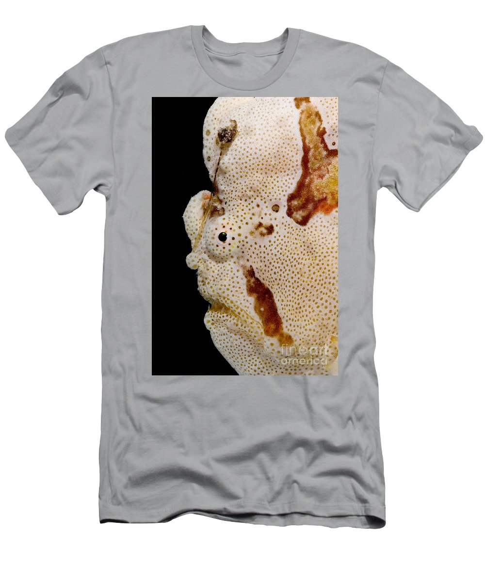Warty Frogfish Men's T-Shirt (Athletic Fit) featuring the photograph Frogfish Face by Dant� Fenolio