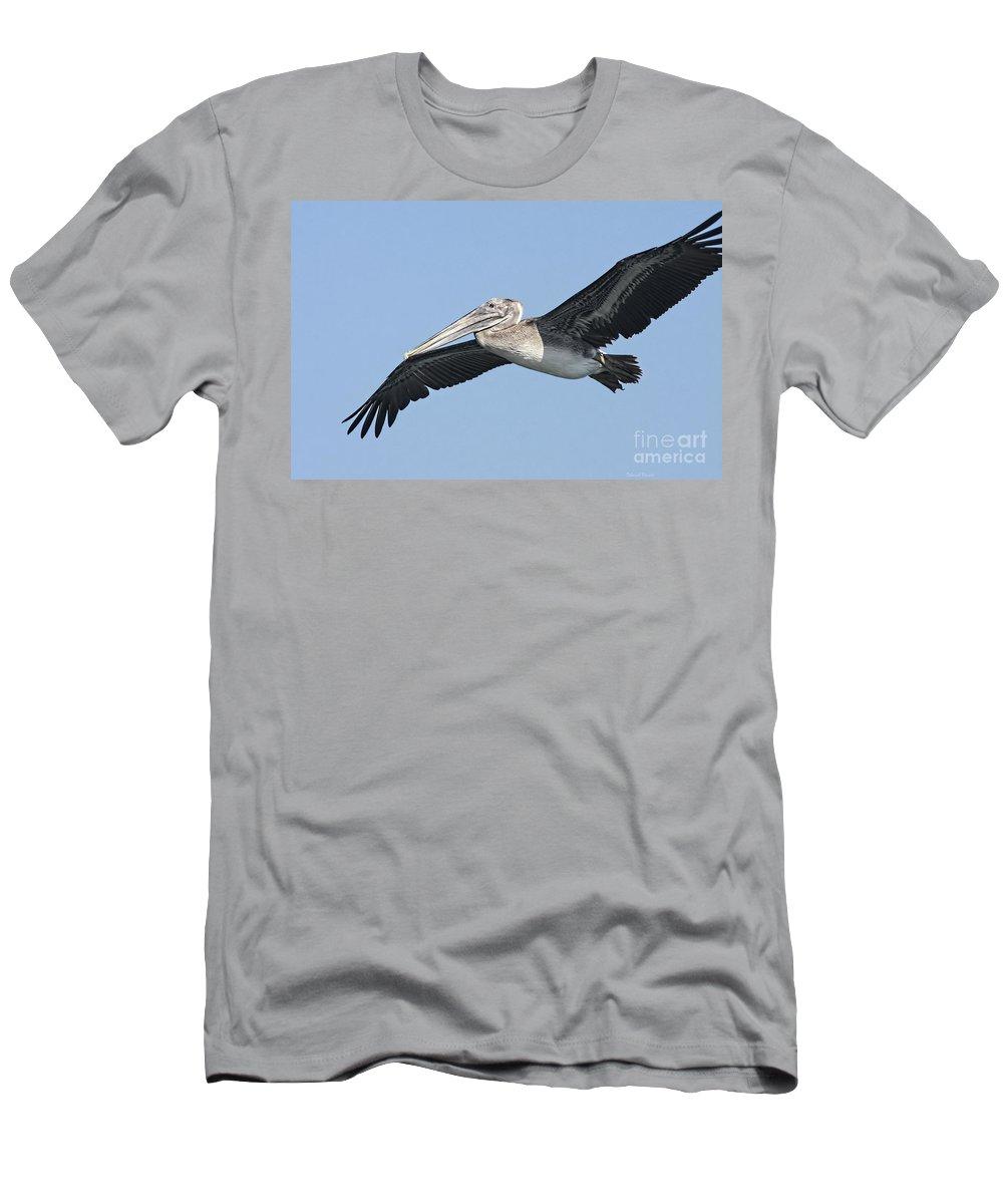 Pelican Men's T-Shirt (Athletic Fit) featuring the photograph Grey Pelican by Deborah Benoit