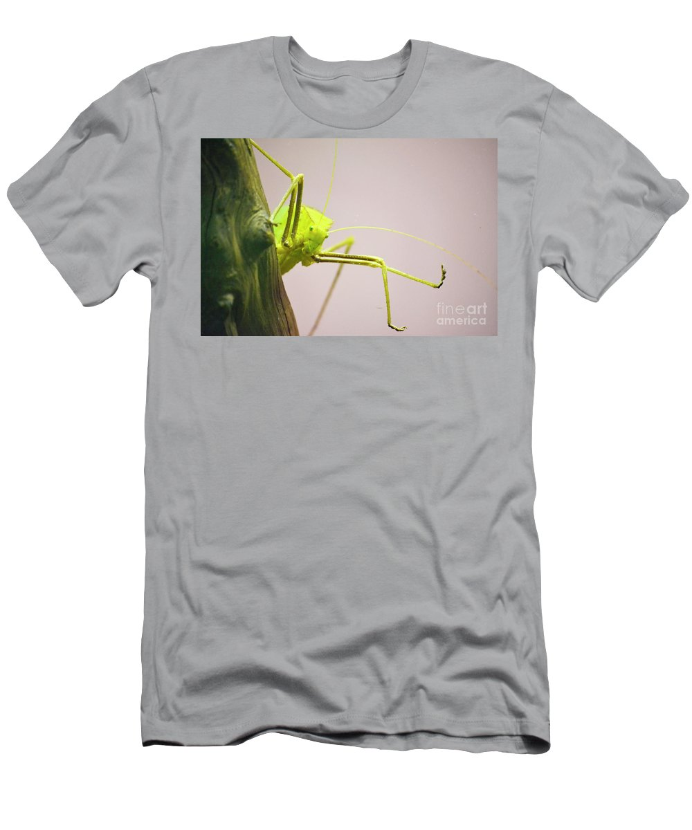Bug Zoo Men's T-Shirt (Athletic Fit) featuring the photograph Handsome Boy by Traci Cottingham