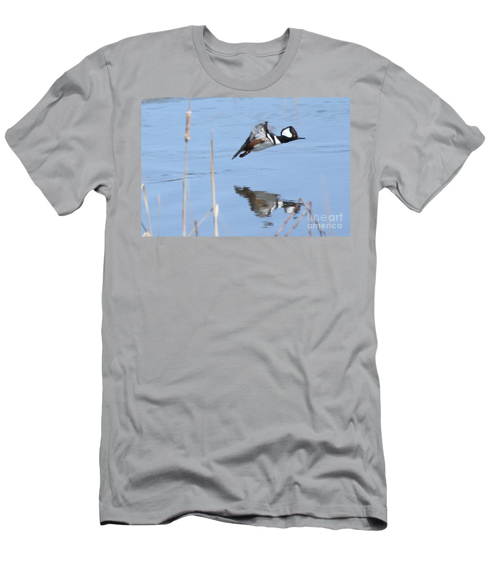 Hodded Men's T-Shirt (Athletic Fit) featuring the photograph Hooded Merganser Flying by Lori Tordsen