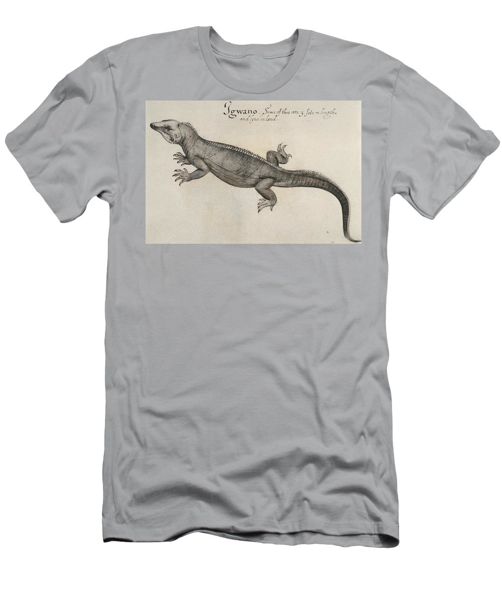 1585 Men's T-Shirt (Athletic Fit) featuring the photograph Iguana, 1585 by Granger
