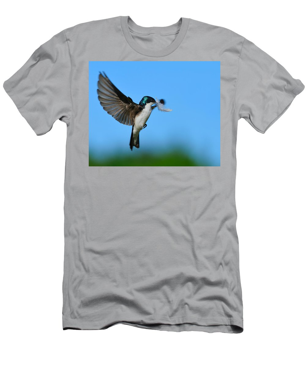 Tree Swallow Men's T-Shirt (Athletic Fit) featuring the photograph Light As A Feather by Tony Beck