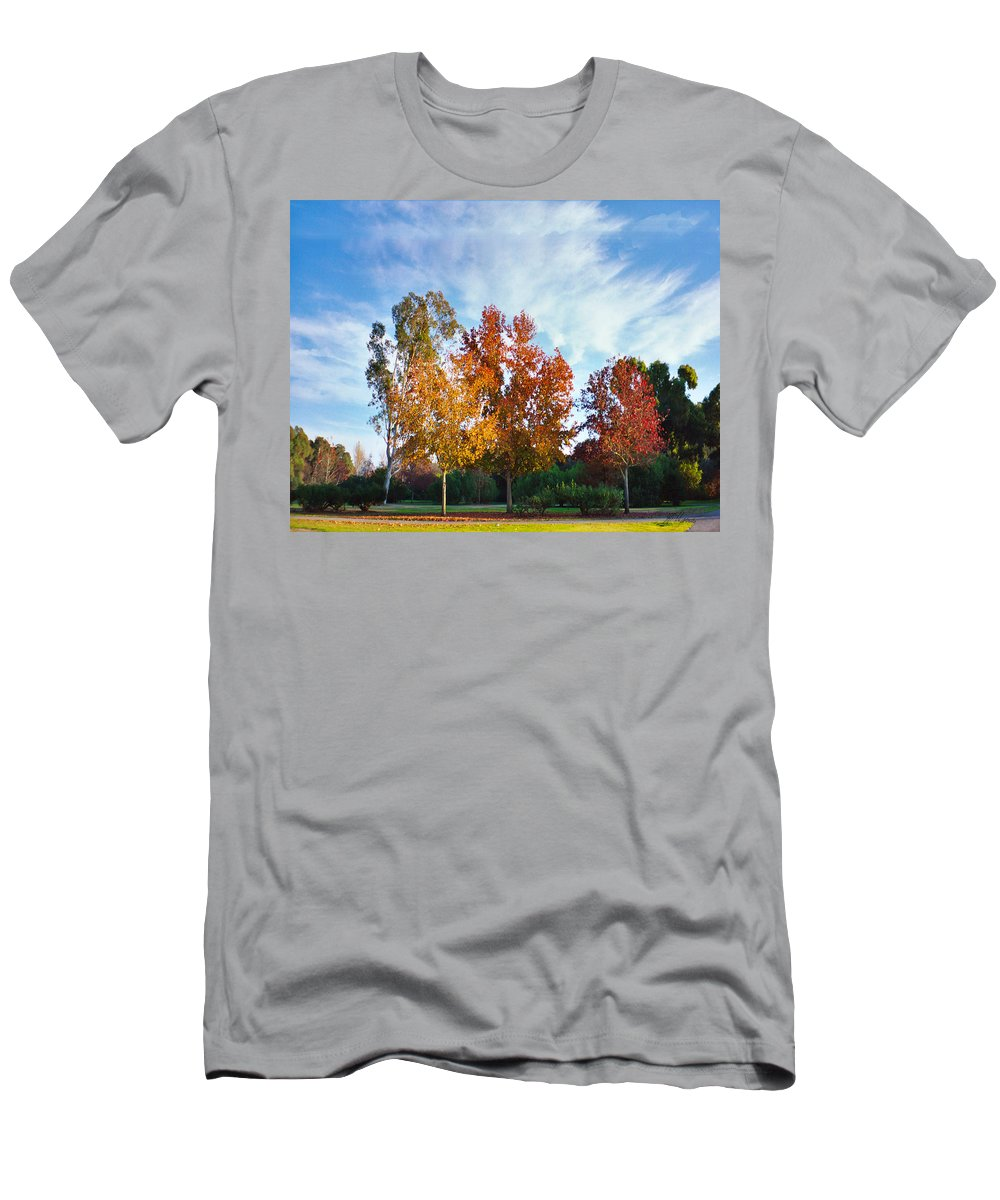 Liquid Amber Men's T-Shirt (Athletic Fit) featuring the photograph Liquid Amber Trees by Diana Haronis
