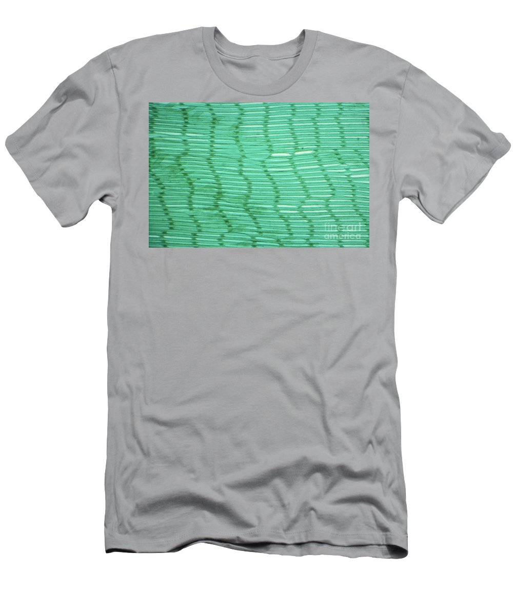 Animal Men's T-Shirt (Athletic Fit) featuring the photograph Mussel Gill Lm by M. I. Walker