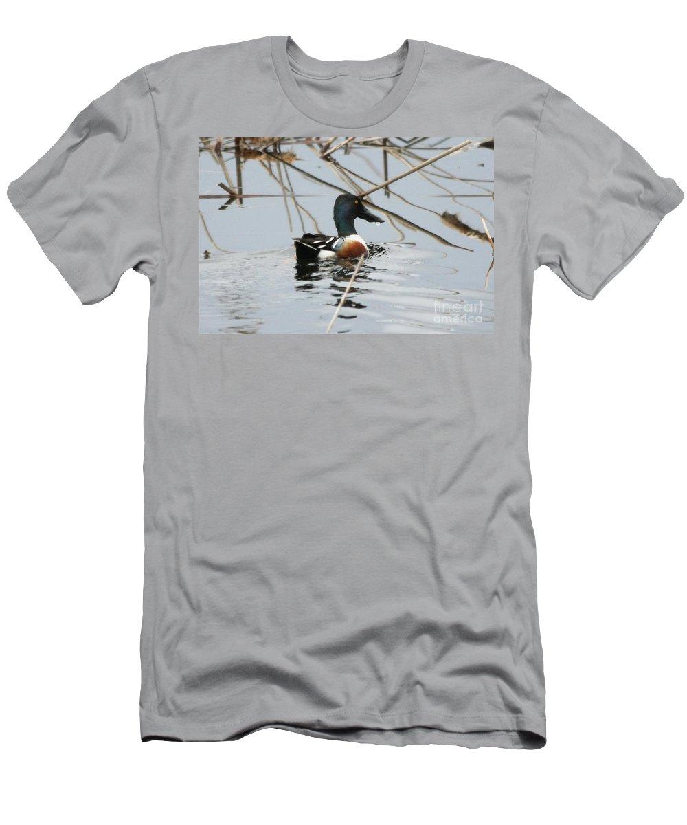 Shoveler Men's T-Shirt (Athletic Fit) featuring the photograph Northern Shoveler by Lori Tordsen