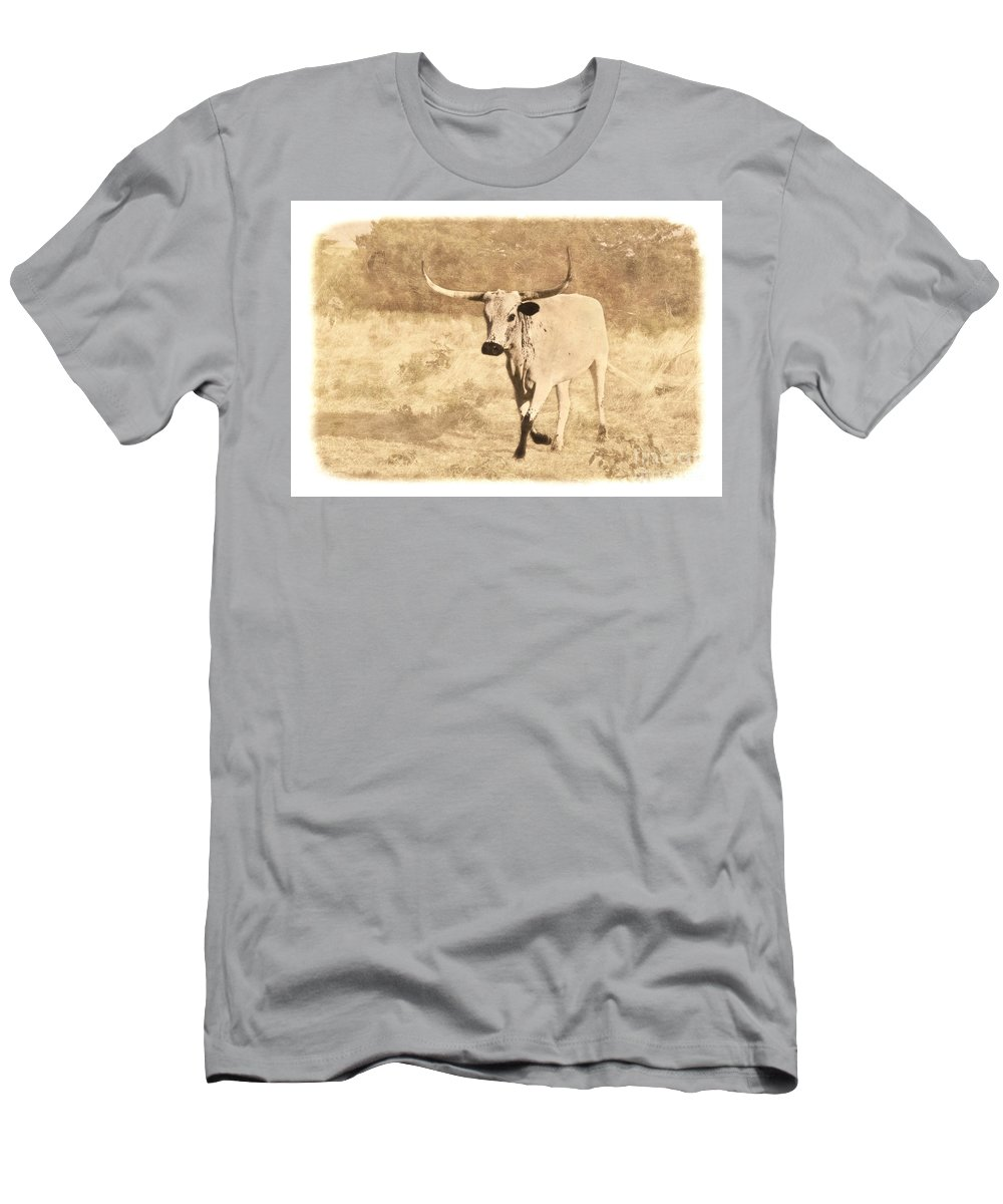 Texas Longhorn Men's T-Shirt (Athletic Fit) featuring the photograph On The Run by Betty LaRue