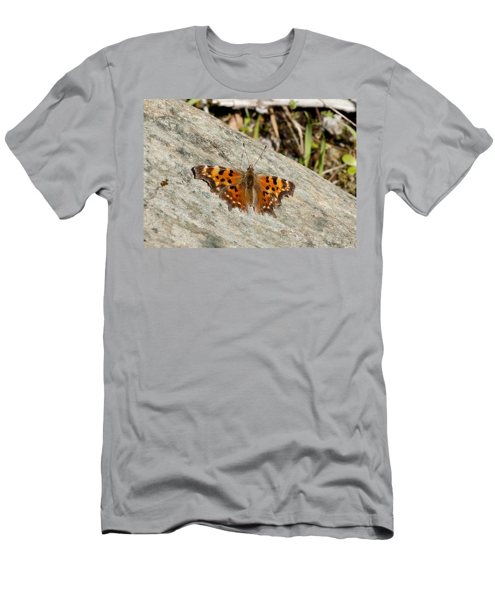 Moth T-Shirt featuring the photograph Orange Moth by Betty Depee