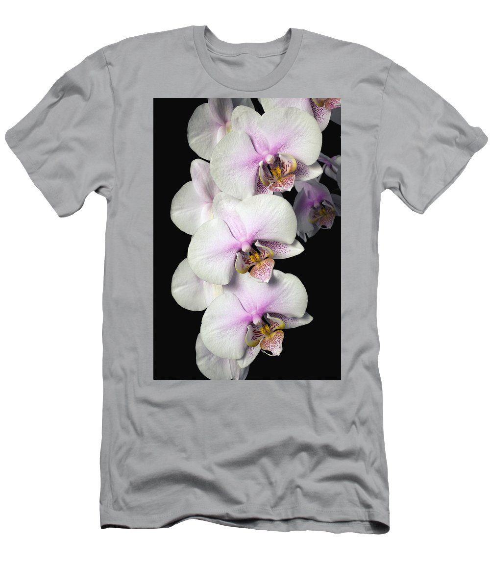 Column Men's T-Shirt (Athletic Fit) featuring the photograph Orchids by David Chapman