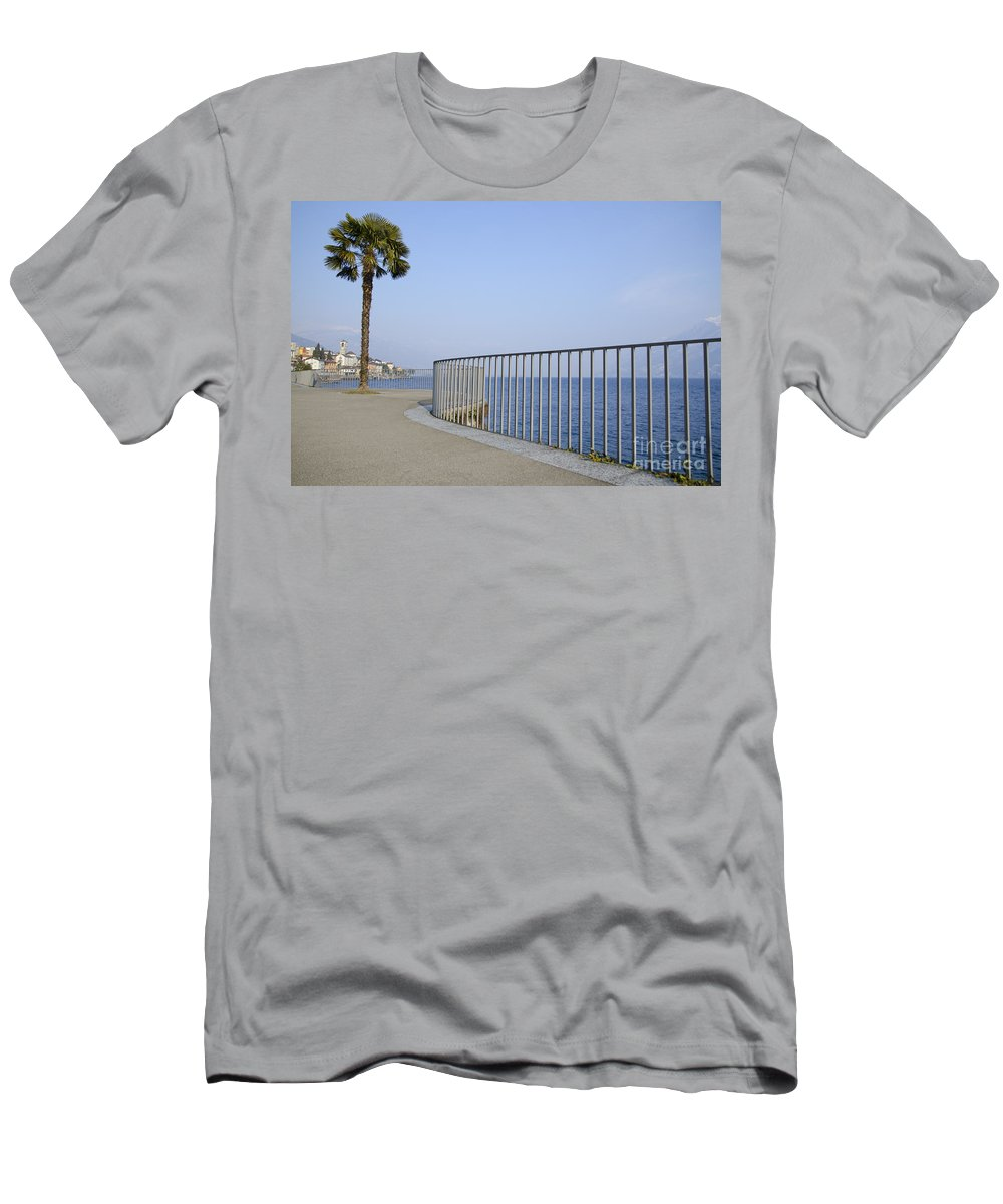Palm Men's T-Shirt (Athletic Fit) featuring the photograph Palm Tree On The Lakefront by Mats Silvan