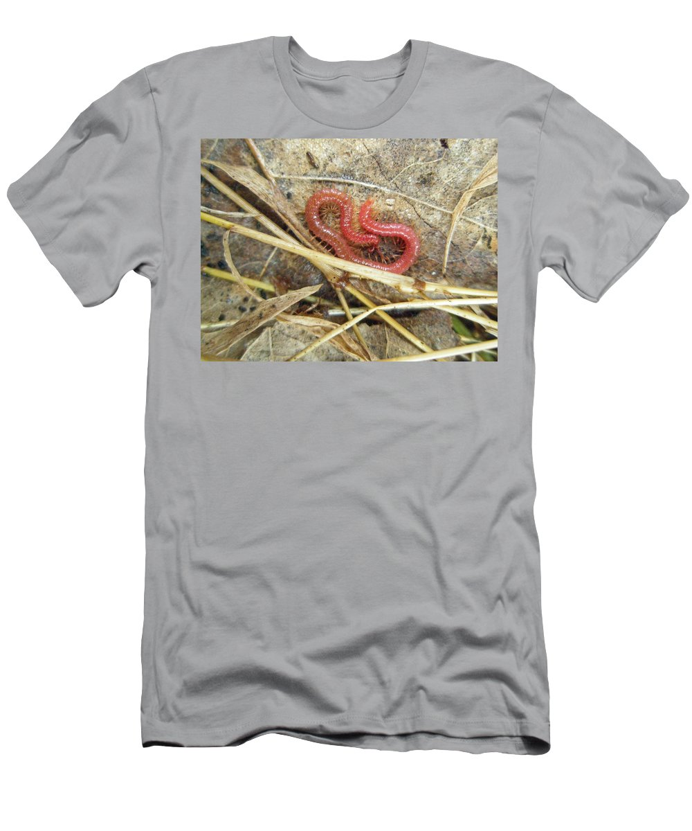 Centipede Men's T-Shirt (Athletic Fit) featuring the photograph Red Soil Centipede - Strigamia by Mother Nature
