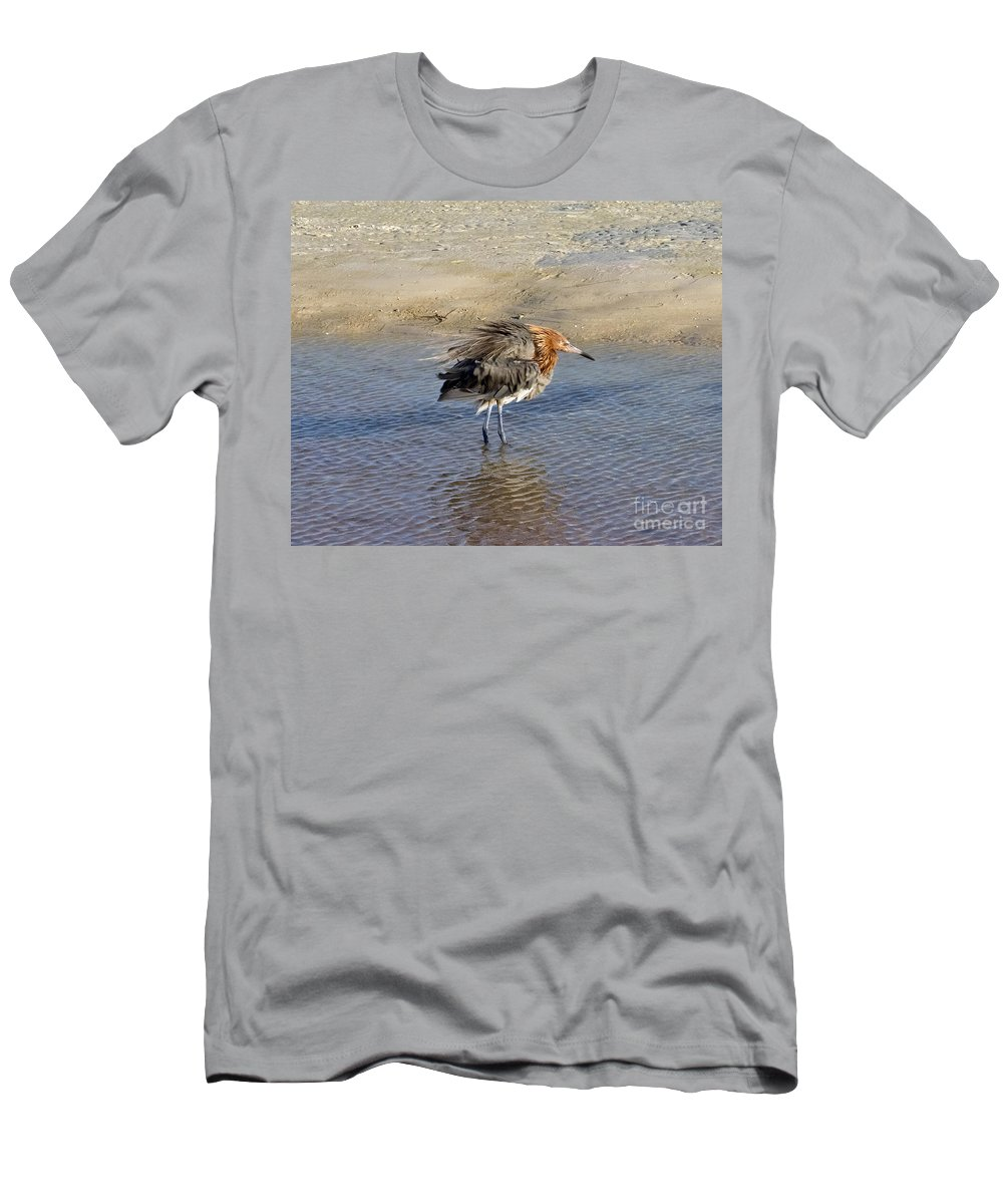 Ruffled Men's T-Shirt (Athletic Fit) featuring the photograph Ruffled Reddish Egret by Stephen Whalen