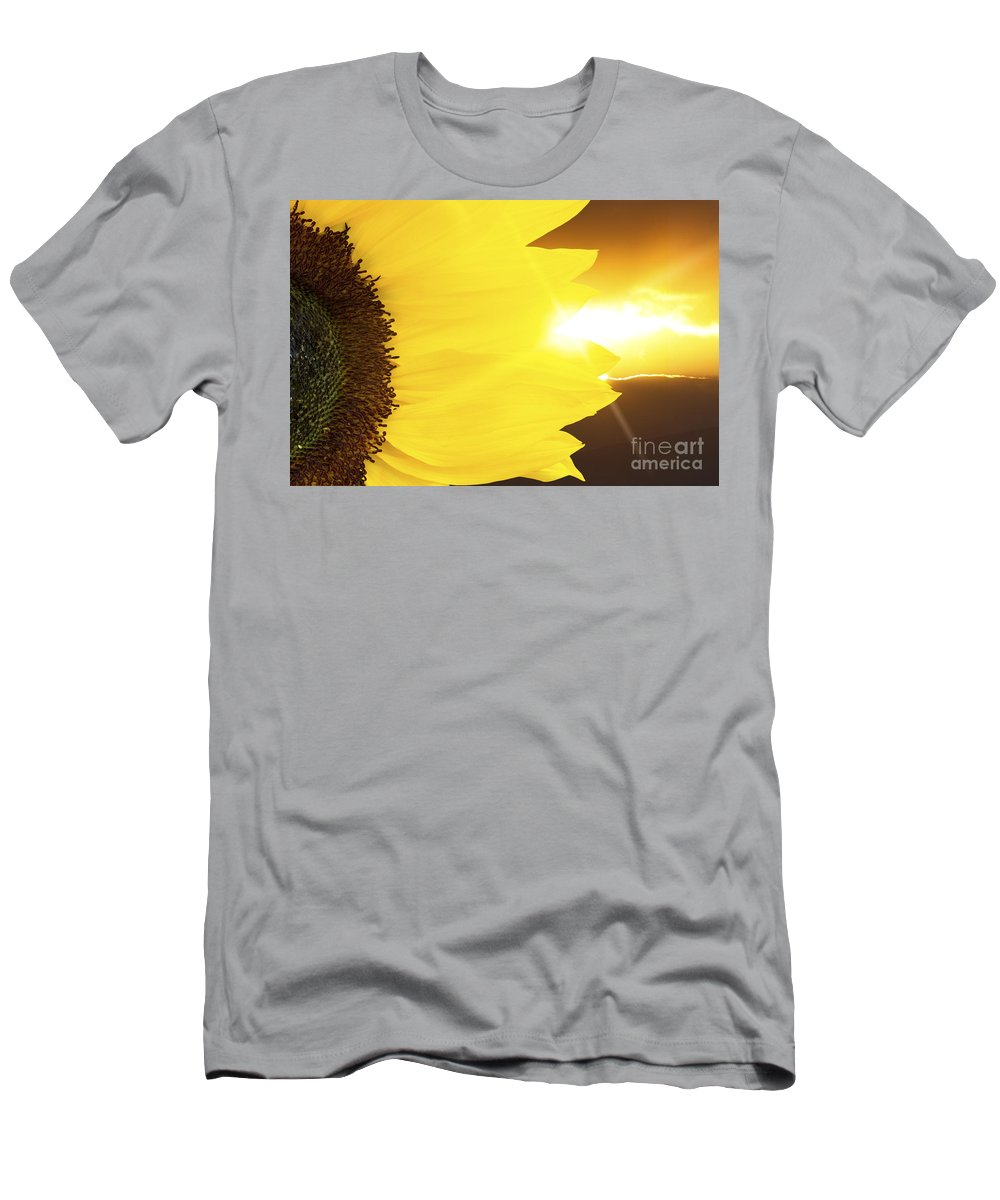 Sunflower Men's T-Shirt (Athletic Fit) featuring the photograph Sunflower And Sunset by Simon Bratt Photography LRPS