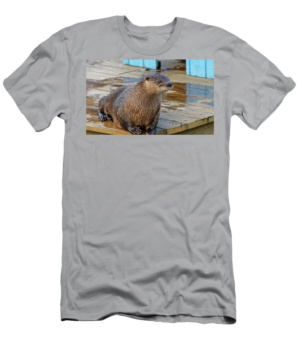 Otter Men's T-Shirt (Athletic Fit) featuring the photograph Taking A Break by Cathi Abbiss Crane