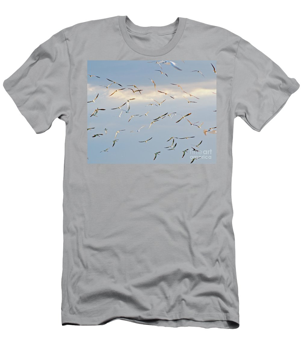 Terns Men's T-Shirt (Athletic Fit) featuring the photograph Terns Flying Away by Stephen Whalen