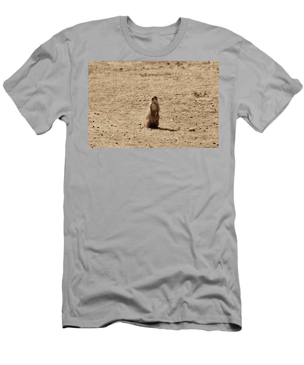 The Prairie Dog Men's T-Shirt (Athletic Fit) featuring the photograph The Prairie Dog by Douglas Barnard